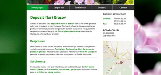 Depozit Flori Brasov