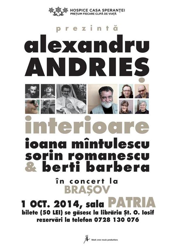 concert-alexandru-andries-hospice-2014