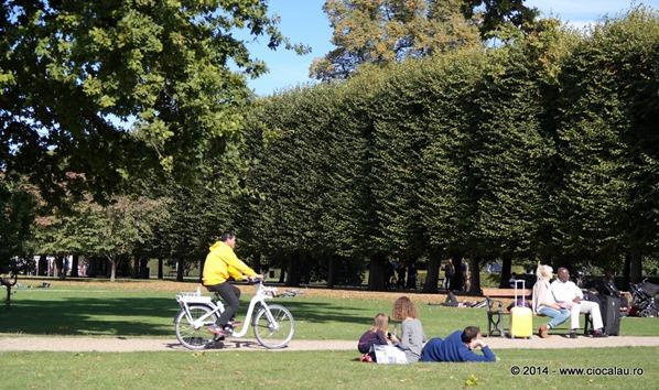 parcul-rosenborg